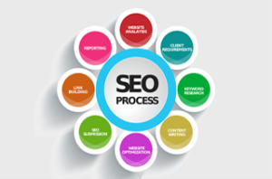 Search Engine Optimization Company In Noida